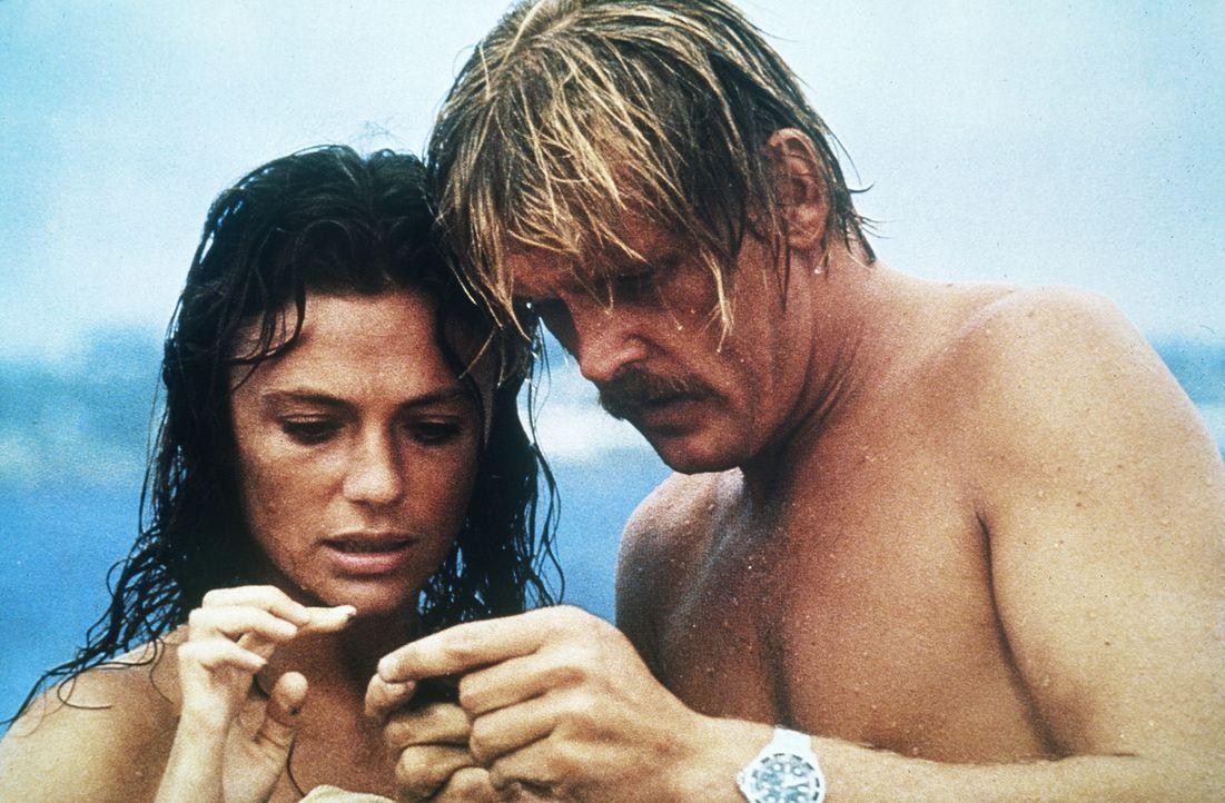Das Taucherpaar Gail (Jacqueline Bisset, l.) und David Sanders (Nick Nolte, r.) verbringt seine Flitterwochen auf den Bermudas. Bei einem ihrer Ausf... - Bildquelle: Columbia Pictures