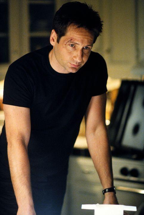 """Doggett wird von Mulder (David Duchovny) auf einen Großbrand bei der Firma """"Zeus Genetics"""" aufmerksam gemacht, bei dem vielleicht ein Mord vertuscht... - Bildquelle: TM +   2000 Twentieth Century Fox Film Corporation. All Rights Reserved."""