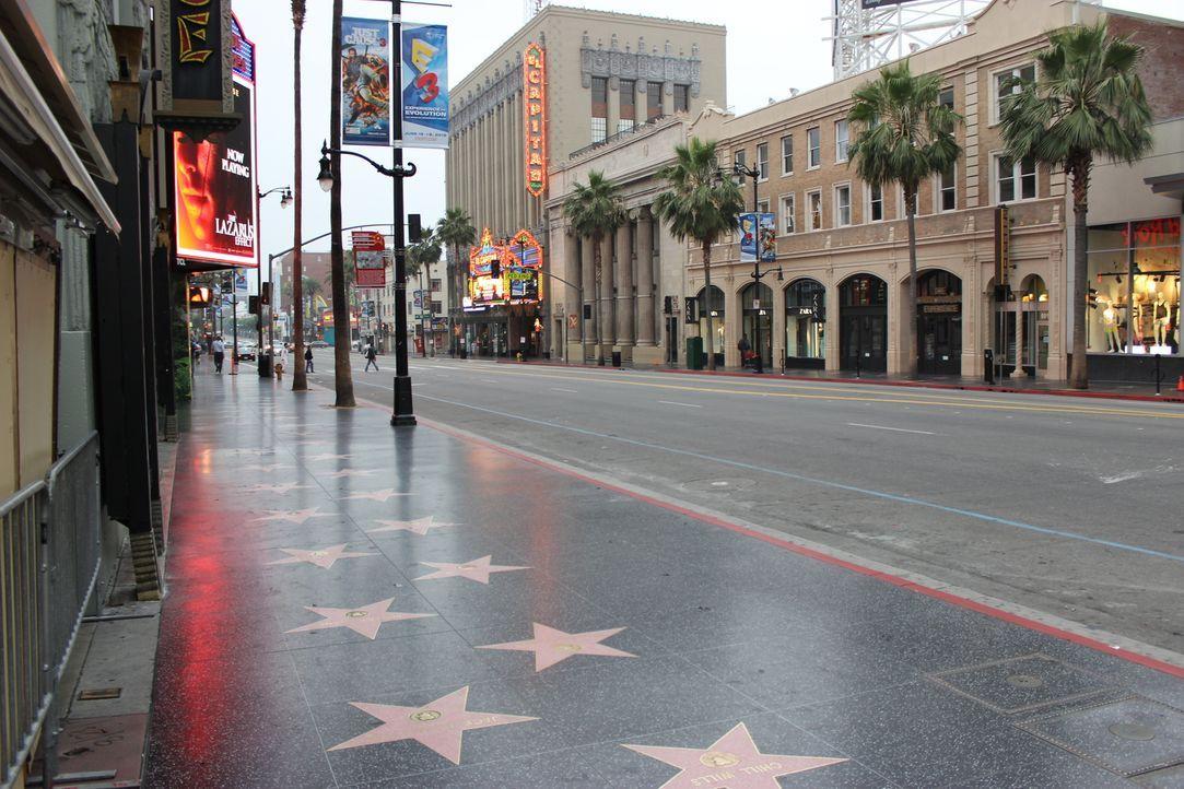 Der berühmte Hollywood Boulevard - Die glitzernde Straße, wo sich Stars und Sternchen verewigen. Aber wie genau bekommt man als Prominenter eigentli... - Bildquelle: Indigo Films/ DCL