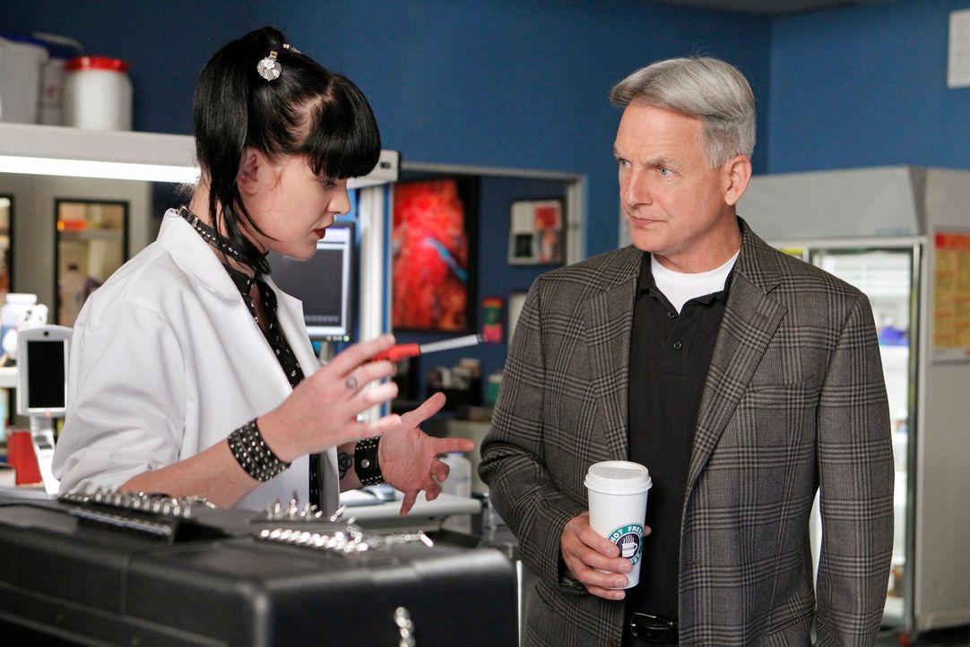 Versuchen einen Fall aufzuklären: Abby (Pauley Perrette, l.) und Gibbs (Mark Harmon, r.) ... - Bildquelle: CBS International Television (ehem: Paramount Pictures International)