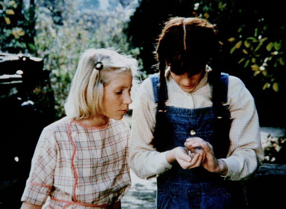 Elizabeth (Kami Cotler, r.) hat einen kleinen Vogel gefunden. Zusammen mit ihrer Freundin Aimée (Rachel Longaker, l.) beschließt sie, ihn wieder zur... - Bildquelle: WARNER BROS. INTERNATIONAL TELEVISION