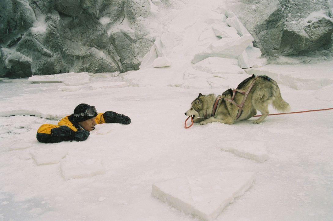 Hat einen lebensgefährlichen Unfall mit fatalen Folgen: der Geologe Davis McClaren (Bruce Greenwood) ... - Bildquelle: Chris Large Walt Disney Pictures. All rights reserved.