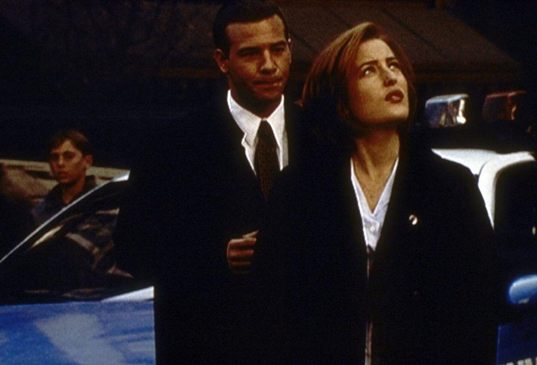 Der junge FBI-Agent Peyton Ritter (Richard Ruccolo, l.) ist Scullys (Gillian Anderson) neuer Partner und hilft ihr bei den Ermittlungen gegen einen... - Bildquelle: TM +   2000 Twentieth Century Fox Film Corporation. All Rights Reserved.