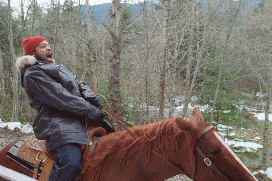 Der Playboy Nick (Ice Cube) ahnt nicht, auf welches Abenteuer er sich einlässt, als er seiner Flamme anbietet, ihre Kinder von Portland nach Vancou... - Bildquelle: Sony 2007 CPT Holdings, Inc.  All Rights Reserved.