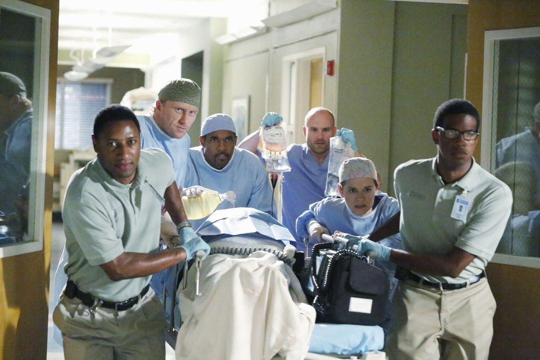 Geben nicht auf und versuchen alles, was in ihrer Macht steht, um Keith zu retten: Owen (Kevin McKidd, 2.v.l.), Ben (Jason George, 3.v.l.) und April... - Bildquelle: ABC Studios