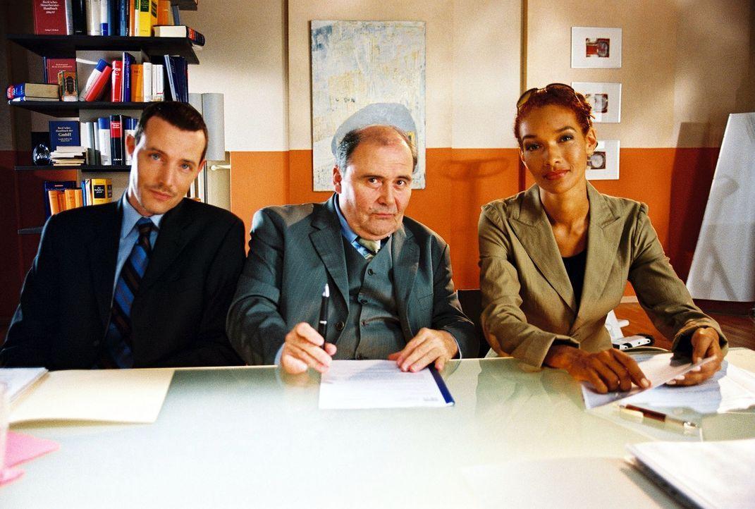 Die Rechtsanwälte Dr. Schiller (Lambert Hamel, M.), Schnüll (Carol Campbell, r.) und Braun (Andreas Hofer, l.) machen Sandra ein sehr gutes Vergleic... - Bildquelle: Hardy Spitz Sat.1