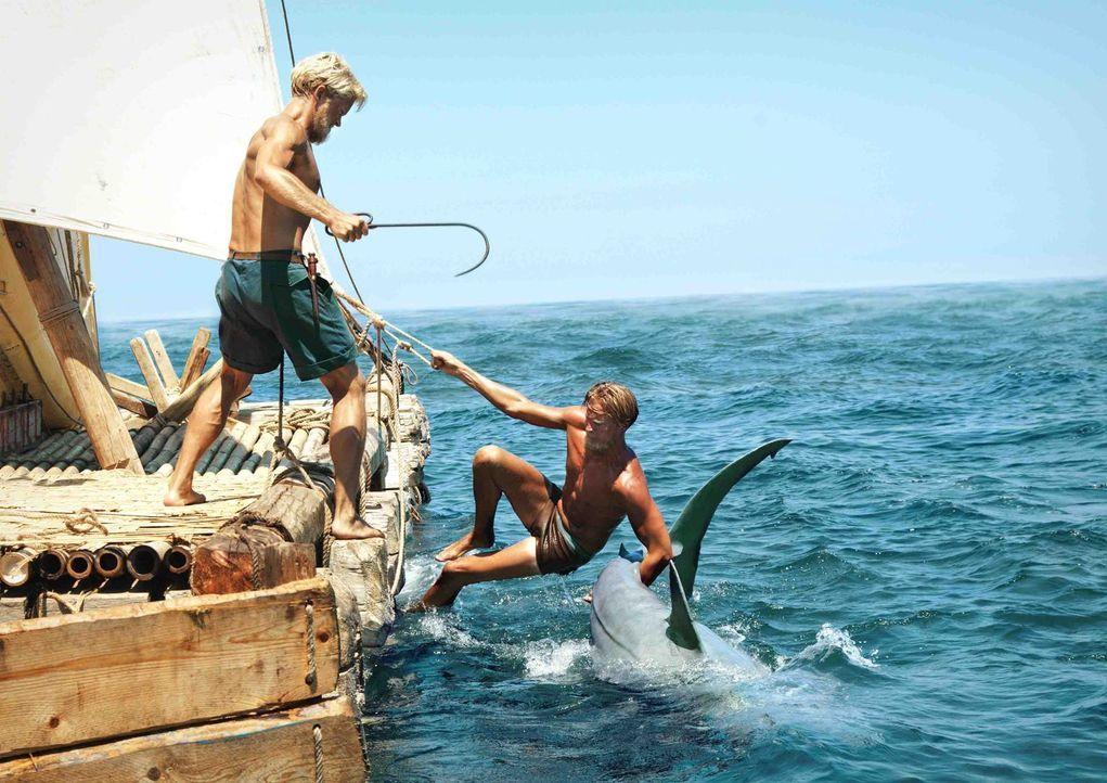 Nachdem sie unwissend einen Hai angelockt haben, haben Knut (Tobias Santelmann, r.) und Torstein (Jakob Oftebro, l.) jetzt mit einem Angriff zu kämp... - Bildquelle: DCM Film Distribution GmbH