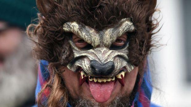 Mit Werwolfmaske sorgen Sie für jede Menge Gruselfaktor auf der Halloweenparty.