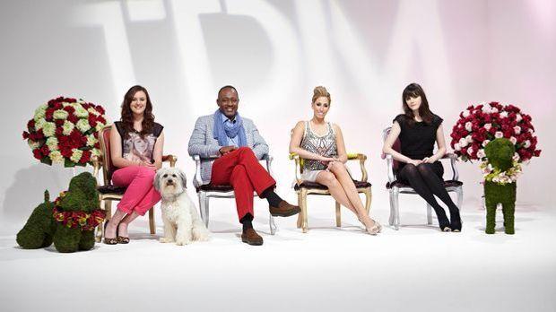 Top Dog Model - Addison Witts, Stacey Solomon, Lilah Parsons und Gastjuroren...