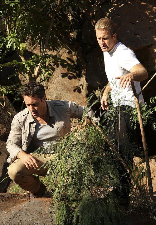 Bei einer Wanderung in den Bergen, machen Steve (Alex O'Loughlin, l.) und Danny (Scott Caan, r.) eine besondere Entdeckung ... - Bildquelle: 2011 CBS BROADCASTING INC.  All Rights Reserved.
