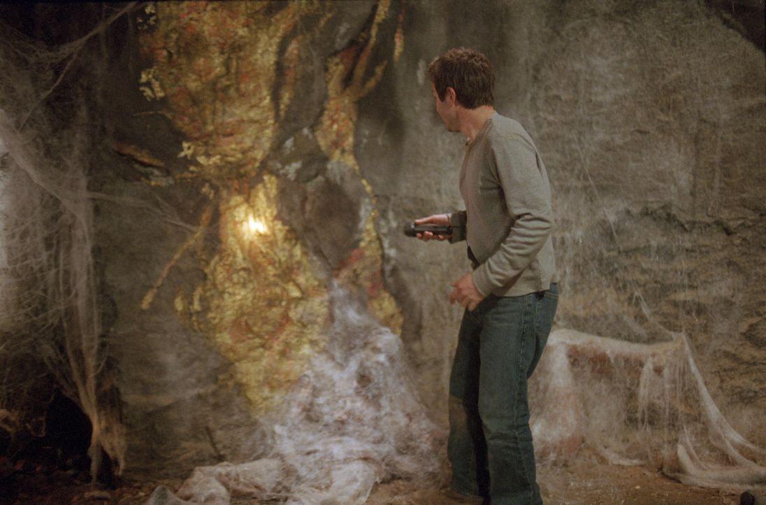 Wagt sich in die Höhle der Riesenspinnen: Chris McCormick (David Arquette) - Bildquelle: Warner Bros. Pictures