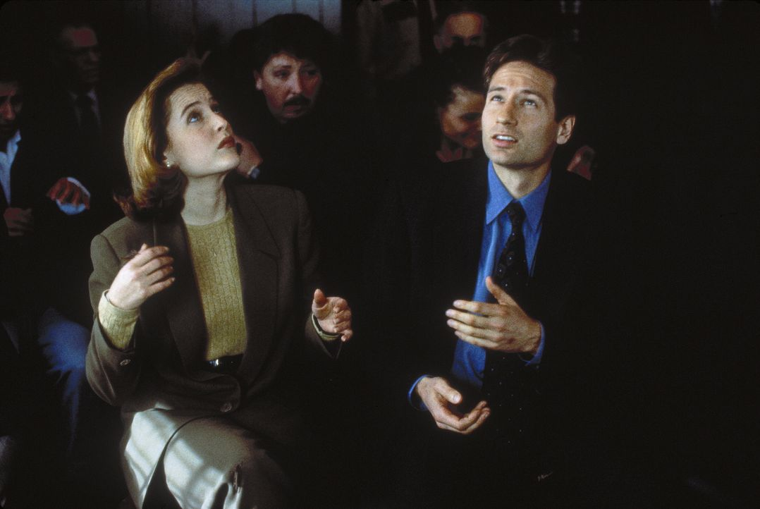 Mulder (Davis Duchovny, r.) und Scully (Gillian Anderson, l.) stellen fest, dass die biblische Heuschreckenplage einen sehr irdischen Hintergrund ha... - Bildquelle: TM +   Twentieth Century Fox Film Corporation. All Rights Reserved.