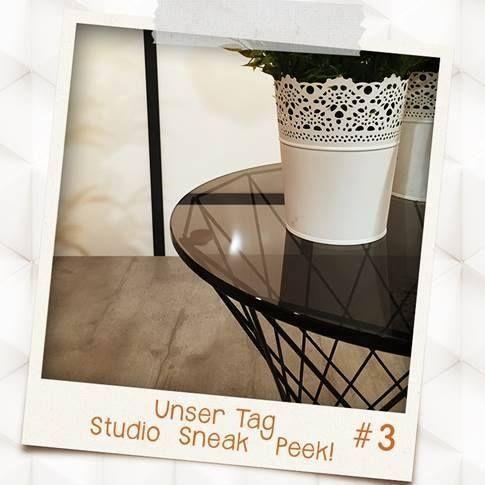 Sneak Peak Studio (5)