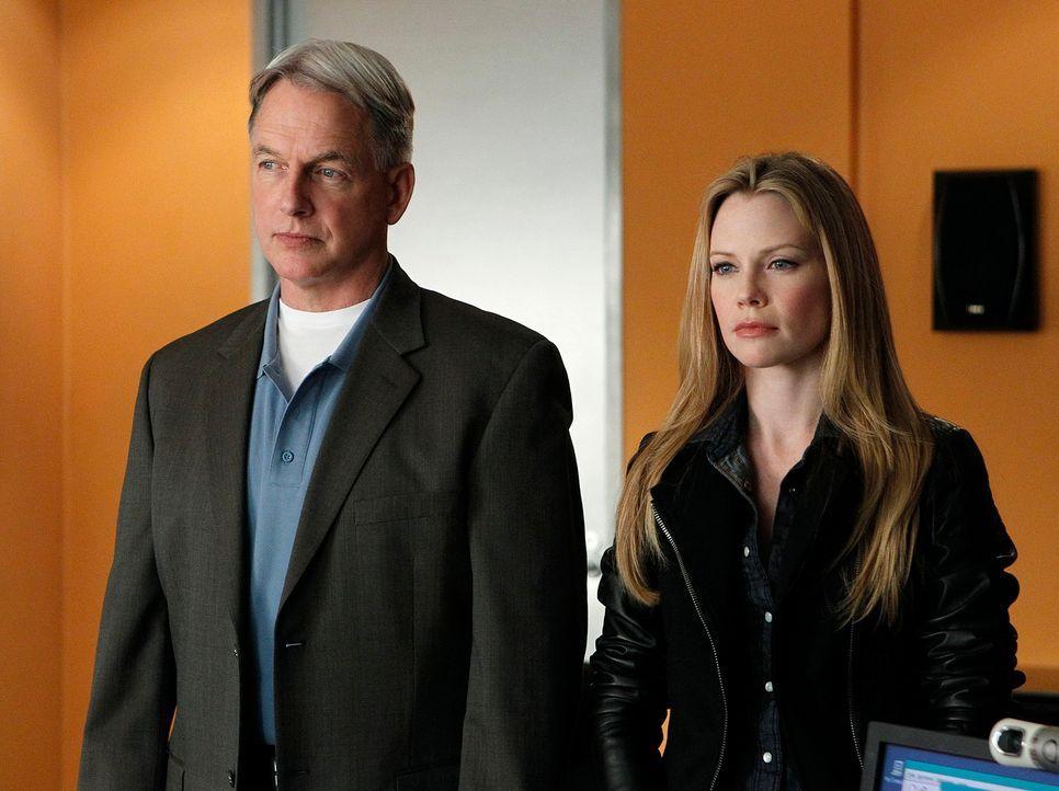 Ein Serienmörder treibt sein Unwesen. Gibbs (Mark Harmon, l.), Special Agent E.J. Barrett (Sarah Jane Morris, r.) und das restliche Team, versuchen... - Bildquelle: CBS Television