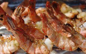 Fisch Grillen Die Besten Rezepte Und Tipps Kabel Eins