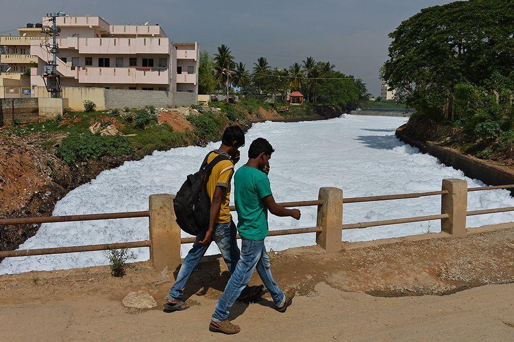 Giftschaum von Bangalore - Bildquelle: Gettyimages