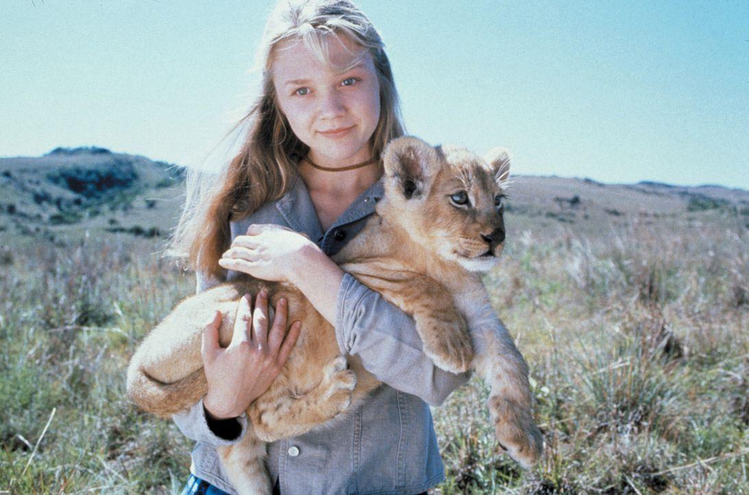 Gemeinsam mit Rand versucht Val (Ariana Richards), ein Löwenjunges aufzuziehen ... - Bildquelle: 1996 Franklin/Waterman 2. All Rights Reserved.