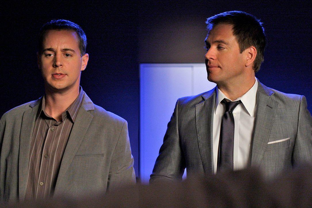 Noch stehen McGee (Sean Murray, rl) und Tony (Michael Weatherly, r.) vor einem Rätsel ... - Bildquelle: CBS Television