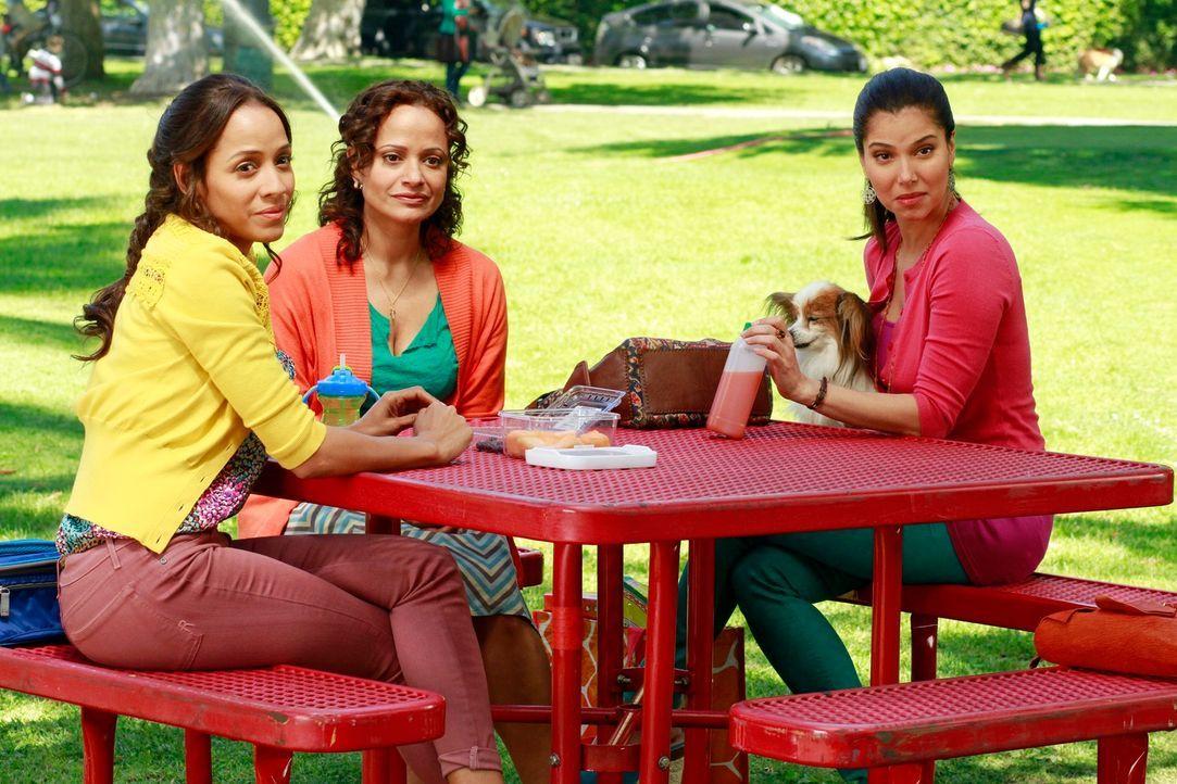 Nach dem Mord an ihrer Freundin Flora wollen Rosie (Dania Ramirez, l.), Carmen (Roselyn Sanchez, r.) und Zoila (Judy Reyes, M.) den Täter finden und... - Bildquelle: ABC Studios