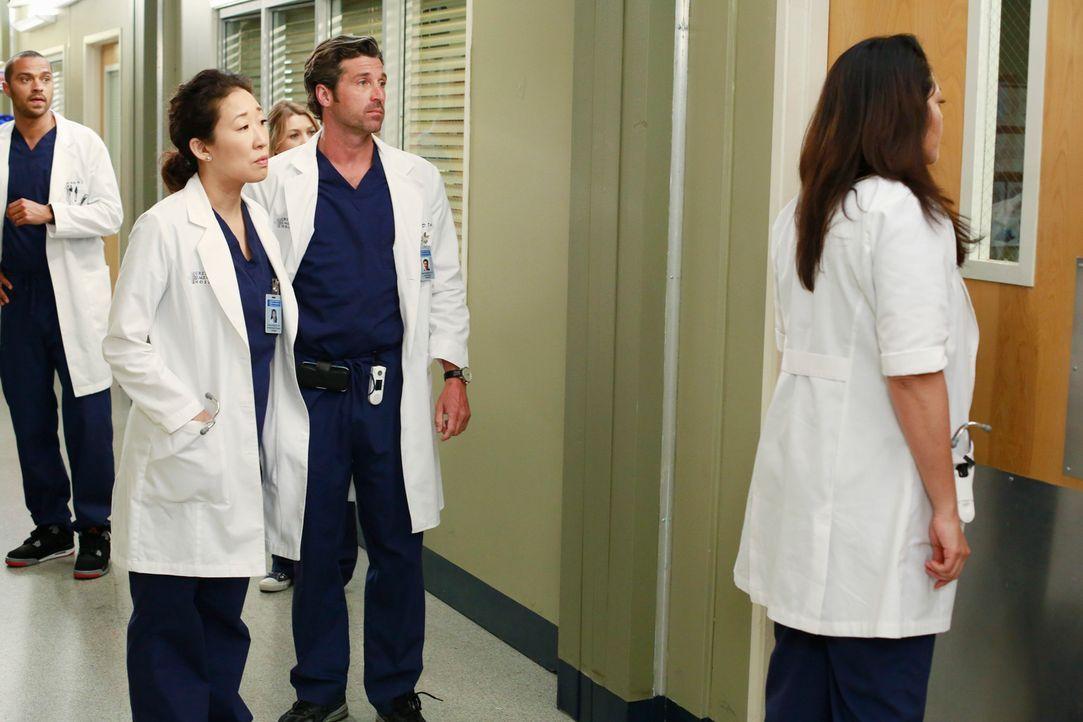 Jackson (Jesse Williams, hinten l.), Christina (Sandra Oh, vorne l.), Derek (Patrick Dempsey, 2.v.r.) und Callie (Sara Ramirez, r.) bemerken erst je... - Bildquelle: ABC Studios