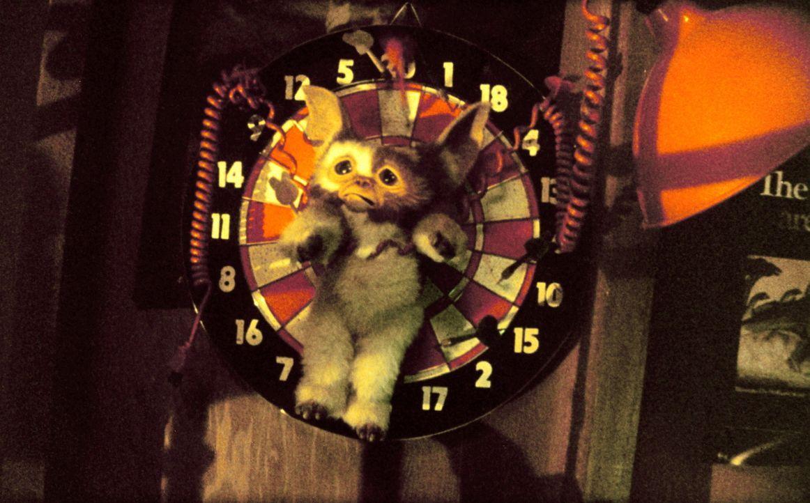 Der arme kleine Gizmo wird gemein malträtiert und als Zielscheibe beim Dart-Werfen benutzt ... - Bildquelle: Warner Bros.