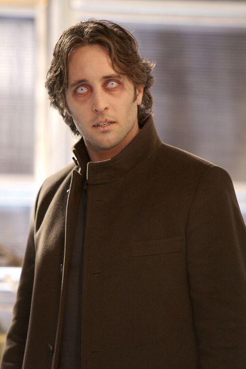 Mick (Alex O'Loughlin) setzt alles daran, um wieder ein Mensch zu werden. Nur für kurze Zeit kann er sich seinen sehnlichsten Wunsch erfüllen ... - Bildquelle: Warner Brothers