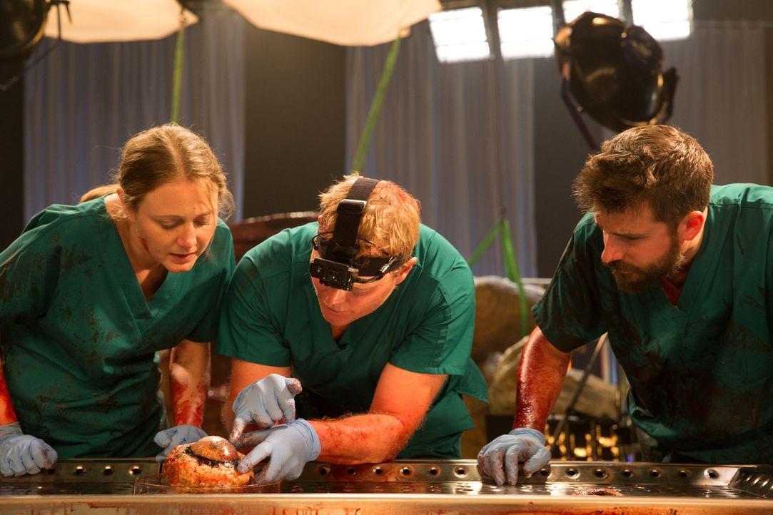 """In """"T. Rex: Autopsie eines Killers"""" seziert ein Spezialistenteam unter realistischen Umständen die lebensnahe Rekonstruktion der Organe eines Tyrann... - Bildquelle: National Geographic Channels/Stuart Freedman"""