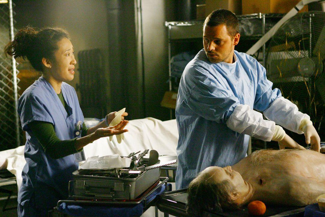 Finden Leichen im Keller:  Alex (Justin Chambers, r.), Cristina (Sandra Oh, l.) und Meredith ... - Bildquelle: Touchstone Television