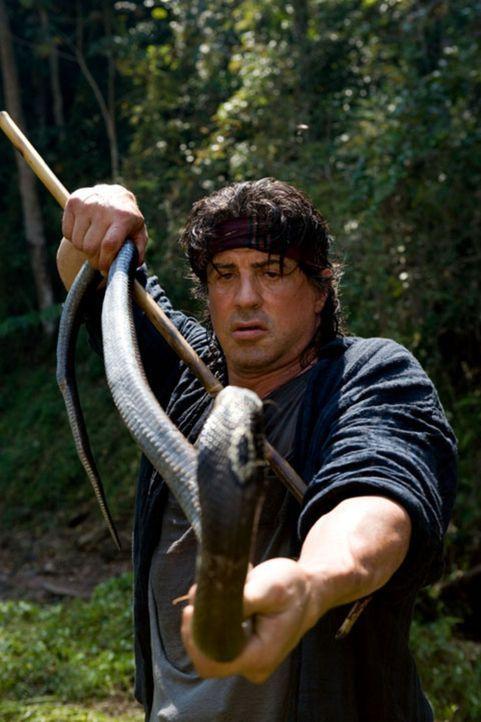 Rambo (Sylvester Stallone) hat das Kämpfen längst aufgegeben. Er lebt allein nahe der thailändisch-birmanischen Grenze. Mit Fischerei und Giftsch... - Bildquelle: Karen Ballard Nu Image Films