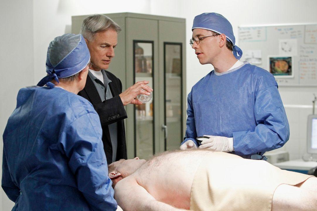 Versuchen herauszufinden, was die Todesursache ist: Jimmy (Brian Dietzen, r.), Ducky (David McCallum, l.) und McGee (Sean Murray, M.) ... - Bildquelle: CBS Television