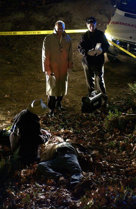 Ein Mitarbeiter eines Call-Centers behauptet, am Telefon den Mord an einem Petty Officer mit angehört zu haben. Die Ermittlungen zeigen, dass der P... - Bildquelle: CBS Television