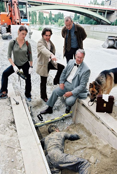 V.l.n.r.: Niki (Elke Winkens), Marc (Alexander Pschill), Kunz (Martin Weinek) und Dr. Graf (Gerhard Zemann) versuchen nach dem Leichenfund Spuren zu... - Bildquelle: Ali Schafler Sat.1