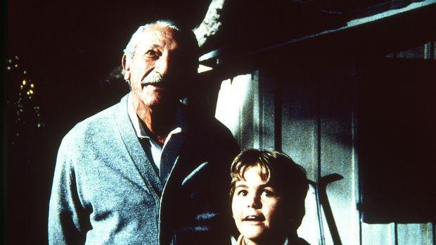Fasziniert sehen sich Großvater Harvey (Harold J. Stone, l.) und sein Enkel A...