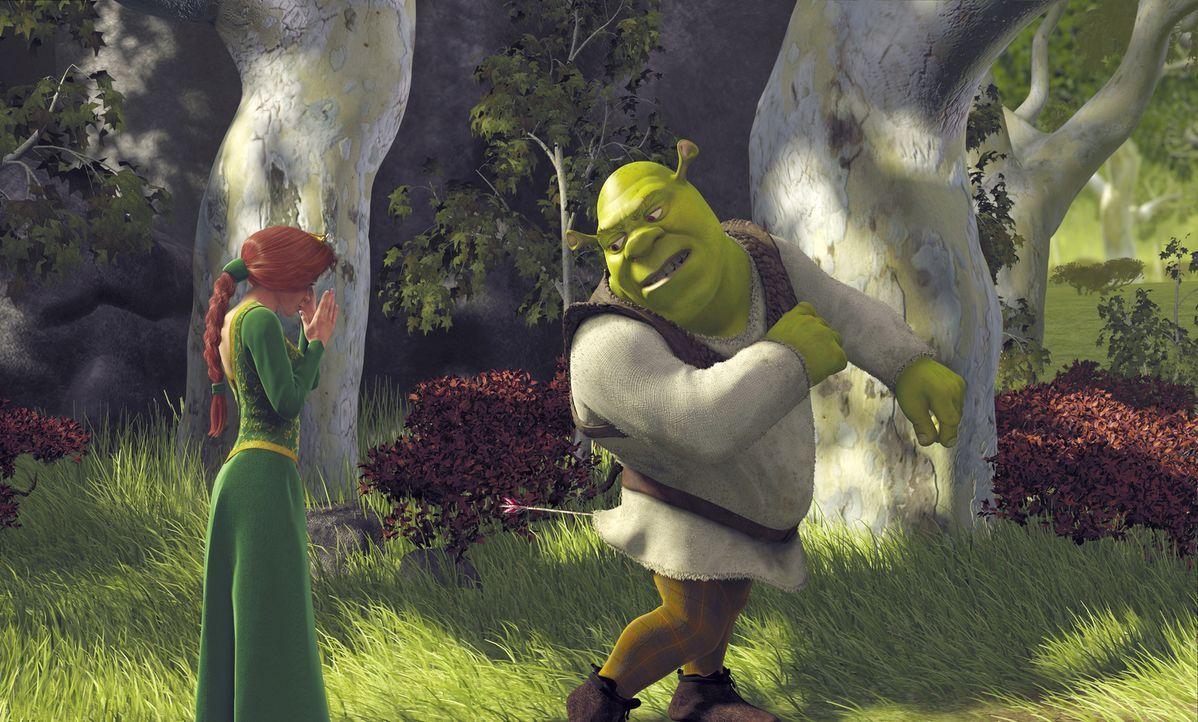 Nur knapp wird Prinzessin Fiona (l.) verfehlt. Dafür hat es Shreks (r.) Allerwertesten erwischt. Wie kommt der Pfeil da jetzt wieder raus? - Bildquelle: TM &   2001 DreamWorks L.L.C.