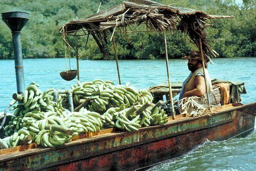 Banana Joe - Bananenhändler Joe (Bud Spencer) besitzt weder Ausweispapiere no...