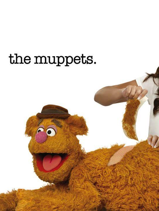 (1. Staffel) - Versucht sich als Komiker: Fozzie Bär - Bildquelle: ABC Studios