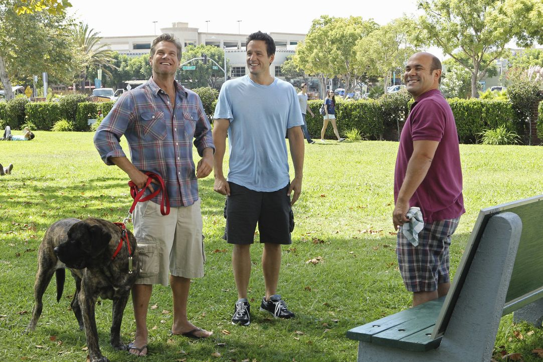 Haben sich ein neues Trinkspiel ausgedacht: Grayson (Josh Hopkins, M.), Bobby (Brian Van Holt, l.) und Andy (Ian Gomez, r.) ... - Bildquelle: 2010 ABC INC.