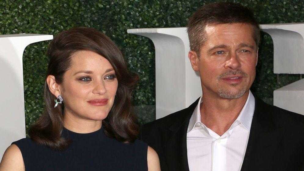 Brad Pitt Datet Marion Cotillard Erster Auftritt Nach Brangelina