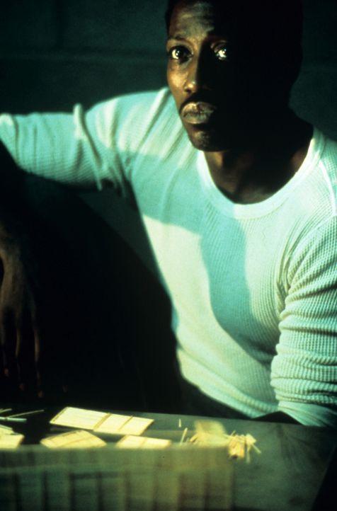 Seit Jahren träumt der ungekrönte Boxchampion des Gefängnisses, Monroe (Wesley Snipes), davon, sich endlich mal mit einem der ganz großen messen... - Bildquelle: Miramax Films