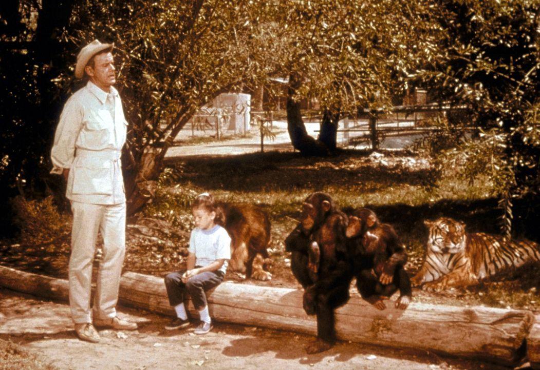 Um Ordnung auf der Buschstation zu behalten, muss Onkel Marsh (Marshall Thompson, l.) auch manchmal seine Stimme erheben. - Bildquelle: CBS Television