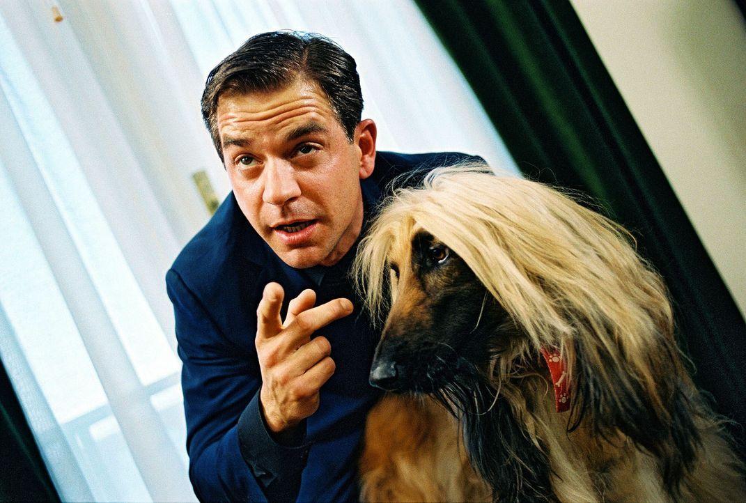 Das Einzige, was Riccardo Rizzi (Florian Fitz) wirklich liebt, ist sein Hund. - Bildquelle: Walter Wehner Sat.1