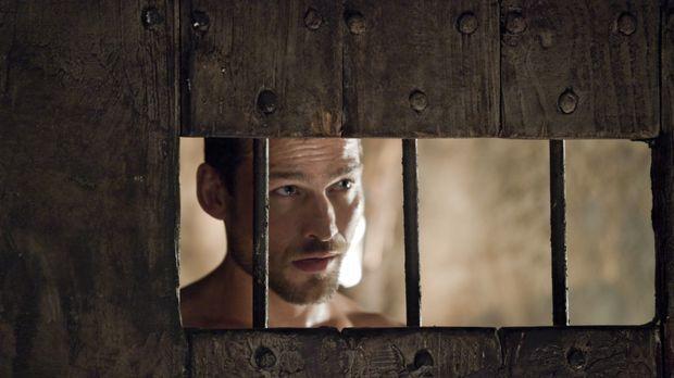 Ahnt noch nicht, dass er schon bald besondere Dienste leisten muss: Spartacus...