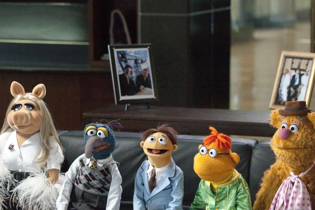 Die Muppets (v.l.n.r.) Miss Piggy, Gonzo the Great, Walter, Scooter und Fozzie Bear legen sich ins Zeug, um das Comeback des Jahres auf die Beine zu... - Bildquelle: The Muppets Studio, LLC. All rights reserved