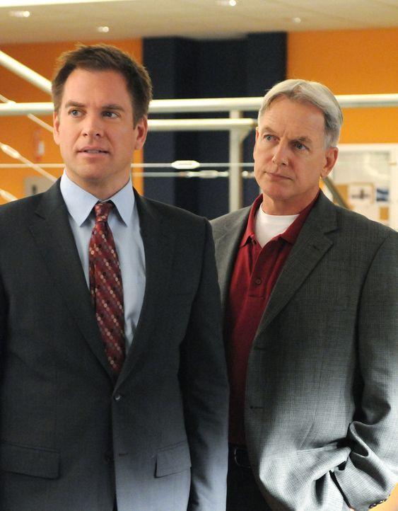 Ermitteln in einem neuen Fall: Gibbs (Mark Harmon, r.) und Tony (Michael Weatherly, l.) ... - Bildquelle: CBS Television