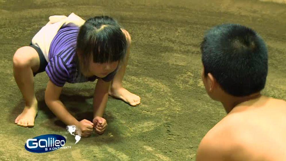 Sumo - Kinder