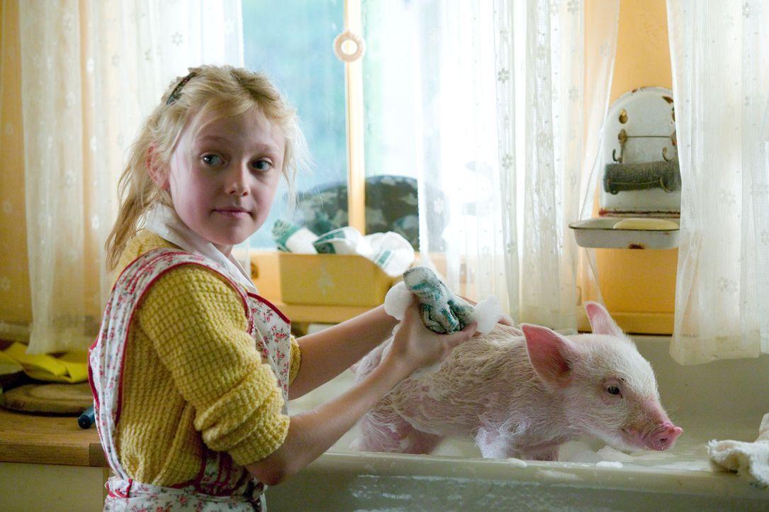 So ein kleines Schwein kann natürlich nicht wissen, wie man sich nach dem Toben im Schlamm wieder sauber bekommt. Glücklicherweise weiß Fern (Dak... - Bildquelle: CBS International Television (ehem: Paramount Pictures International)