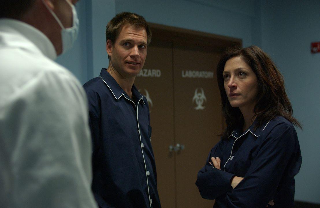 Eine junge Frau wird vergewaltigt und der Täter scheint jemand aus der Navy zu sein. Nachdem Tony (Michael Weatherly, l.) einen Brief geöffnet hat,... - Bildquelle: CBS Television