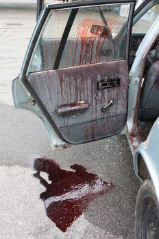 Homicide Hunter - Dem Mörder auf der Spur - Ein neuer Fall für Lieutenant Joe...