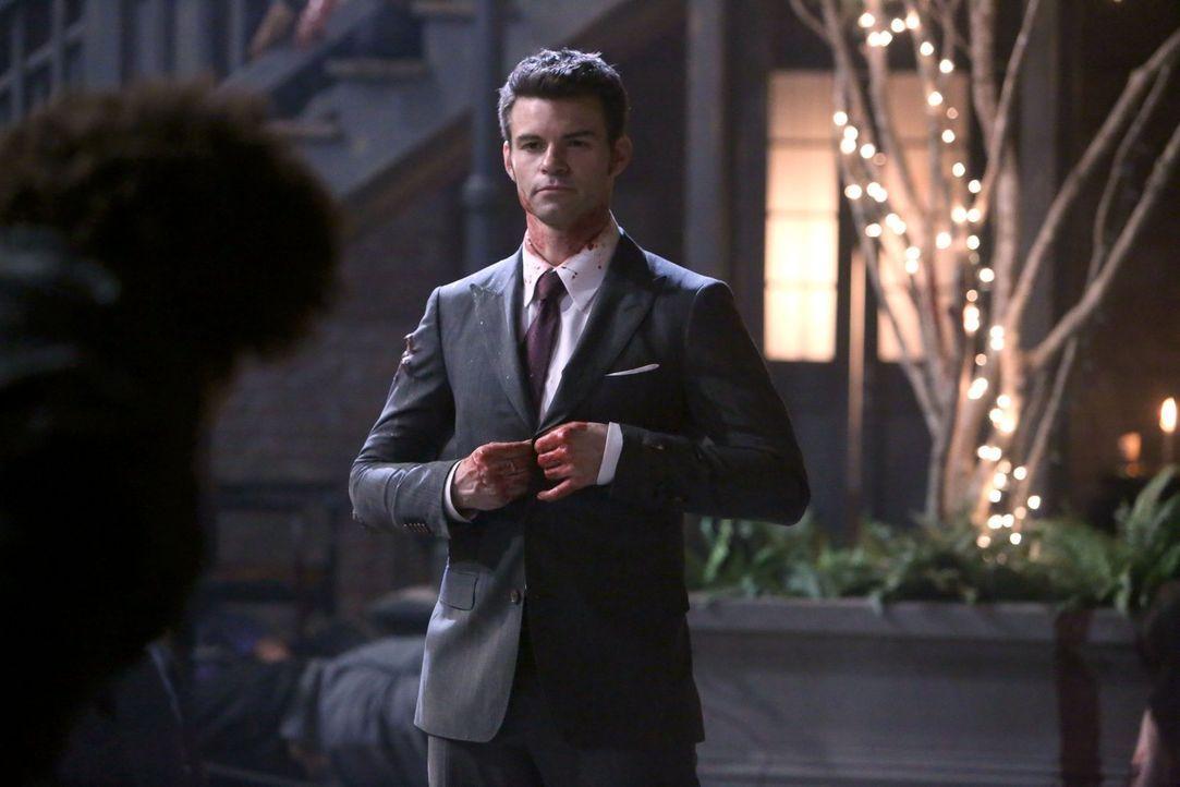 Die neuesten Entwicklungen im French Quarter könnten Elijah (Daniel Gillies) schlussendlich alles nehmen ... - Bildquelle: Warner Bros. Television