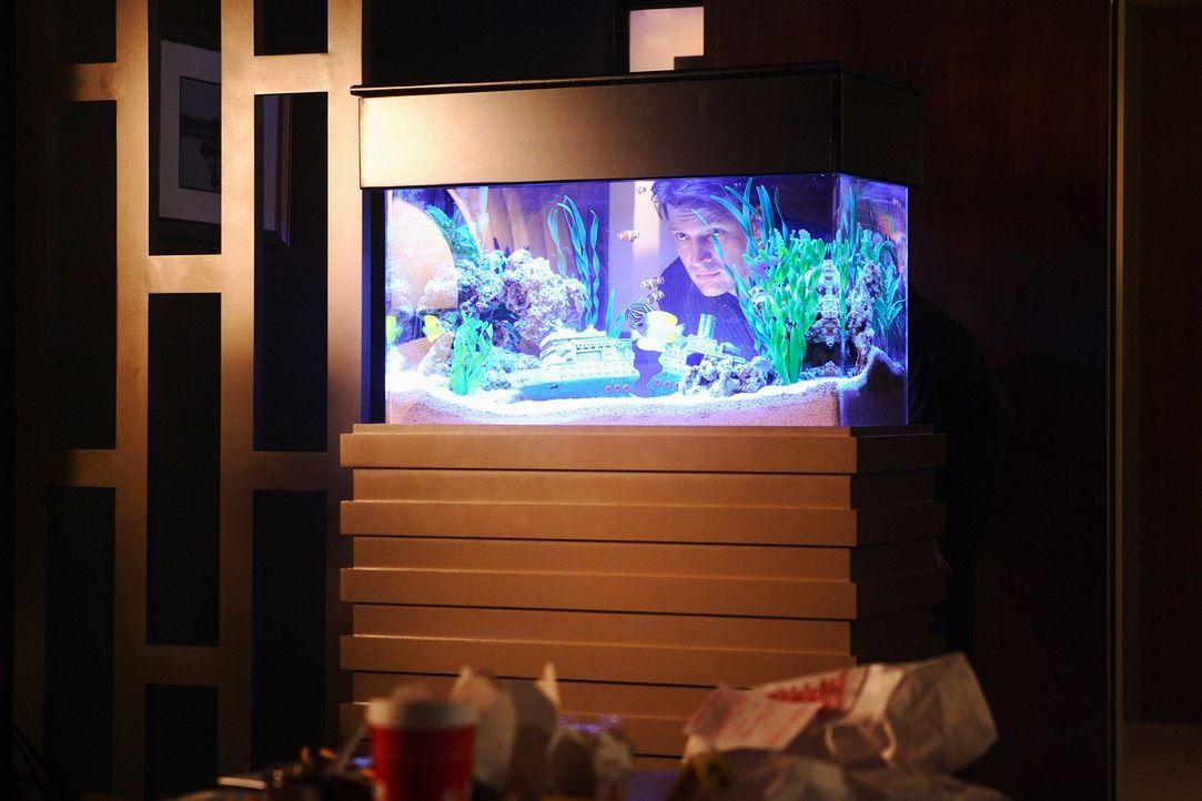 Nimmt den Tatort genau unter die Lupe: Richard Castle (Nathan Fillion) - Bildquelle: ABC Studios